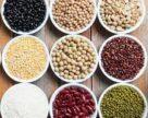 Доля отечественных семян в посевах зерновых и зернобобовых составляет 72,1%