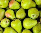 Сховища для фруктів, овочів, ягід