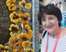 Українські вчені нагадали про силу грибів-екзотів у боротьбі з коронавірусом