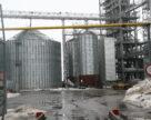 Аграрный фонд стал увеличивать объемы форвардных закупок зерна