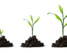 Біостимулятори нового покоління на основі рослинних метаболітів