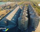 Из Госрезерва Украины исчезло зерно на 800 млн грн