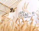 Украинские аграрии заняли второе место в мире по валютной выручке за зерновые