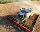 Юго-восточные регионы Украины собрали более 1 млн тонн зерна