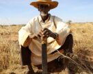 Как борются с импортом удобрений в Нигерии