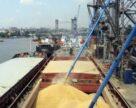 Морские порты Украины  перевалку зерна сократили на 10%, масла увеличили