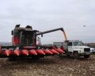 Украинские аграрии собрали около 62 млн т зерна