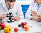 Досліджуємо плодоовочеву продукцію в лабораторних умовах