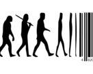 Эволюция дистрибьюции