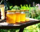 Українські солодощі, мед та снеки — серед топ-запитів від японських імпортерів