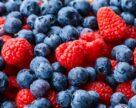 Лохина та волоські горіхи очолюють рейтинг привабливості для експорту серед культур плодово-ягідної та овочевої груп