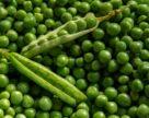 Если откроется китайский рынок, производство гороха в Украине может увеличиться на 8%