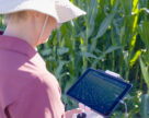 Цифрове сільське господарствоє більш продуктивним і екологічним
