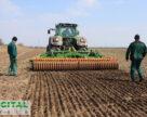 На полігоні аграрних інновацій Digital Field заклали демо-посіви ярої пшениці