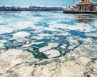 Турецкий Bagfas остановлен по экологическим причинам