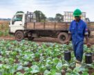 Minbos Resources и Sagrind открывают новое производство в Анголе