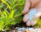 Почему растут цены на азотные удобрения?